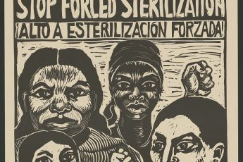 Stop Forced Sterilization Poster from the San Francisco Poster Brigade, 1977. Source: Library of Congress